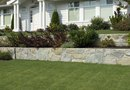 Flowerbed Ideas for the Front of a House Facing East