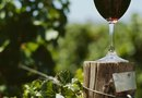 How to Install Wooden Posts for Grape Vineyards