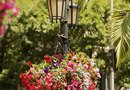 How to Hang Planter Mounts on a Light Pole