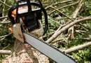 What Causes a Chain Saw to Leak Gas?