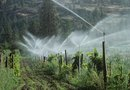 How to Increase the Water Pressure on an Automatic Sprinkler System