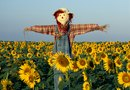 How to Make a Scarecrow to Chase Deer Away