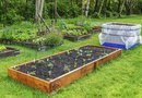 Square Foot Gardening & Watering Requirements