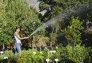 Low-Pressure Watering for Landscapes