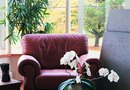 How to Repair Leather Furniture Upholstery