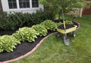 Low-Maintenance Flower Bed Without Weed Pulling