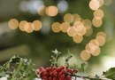 How to Make Christmas Decorations Out of Holly Berries