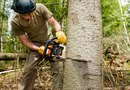 """How to Oil a Ryobi Battery Powered, Electric Chain Saw"""