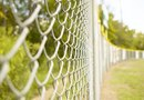 High Desert Plants That Grow on a Chain Link Fence