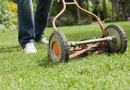 How Long Can Reel Mowers Stay Sharp?