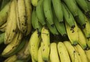 How to Measure a Banana's Ripeness