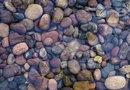 How to Landscape with Pebble Rock