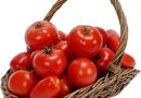 Varieties of Determinate Tomatoes