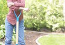 How to Loosen Clumped Soil