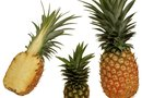 Is Pineapple a Good Fruit to Eat for a Workout?