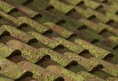 How to Prevent Moss on Wood Roofing Shingles