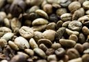 How to Grow Coffee Plants From Unroasted Beans