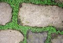 How to Lay Flagstone in the Dirt With a Weed Barrier