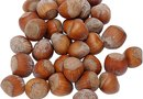 What Is the Difference Between Hazel Nuts & Hickory Nuts?