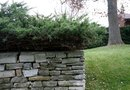 How to Lay Landscaping Fabric Behind a Retaining Wall