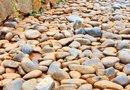 How to Landscape With Rocks Instead of Mulch