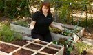 Vegetable Varieties for Square Foot Gardens