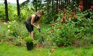 How to Plant Small Shrubs