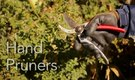 How to Use Hand Pruners