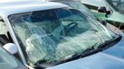 [Broken Windshield Business] | How to Start a Broken Windshield Business