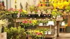 [Flower Shop] | How to Sell My Flower Shop