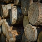 Definition of Seasoned Firewood