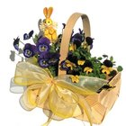 Ideas for a Sunshine Basket