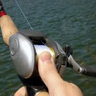 How to Cast an Open-Faced Spinning Reel