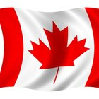 How to Start a Nonprofit Organization in Canada