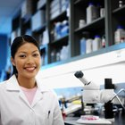 The Advantages of a Ph.D. in Biotechnology