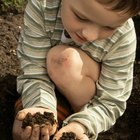 Why Do Children Eat Dirt?