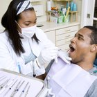 List of the Best Dentistry Schools in the U.S.