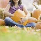 Facts About Pumpkins for Kids
