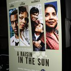 "Literary Devices Used in the Story ""A Raisin in the Sun"" by Lorraine Hansberry"