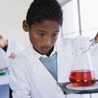 What Are the Sciences Taught in Middle School?