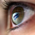 Information on Facebook Search Profile