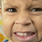 Aggressive Behavior in Toddler Boys