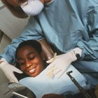 What Kind of Bachelor's Degree Do You Need to Go Into Dentistry?