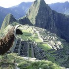 Tours to Machu Picchu for Kids