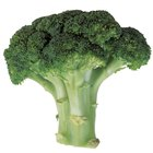 Can I Eat Broccoli's Stem?