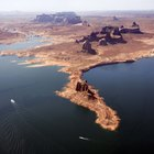 Pesca en el Lake Powell