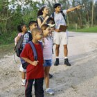 """Summer Camps for Kids in Cook County, Illinois"""
