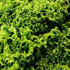How to Blanch Kale for Freezing