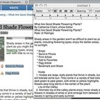 How to Convert an HTML File to a Word Document