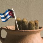 How to Find Cuban Relatives in Cuba
